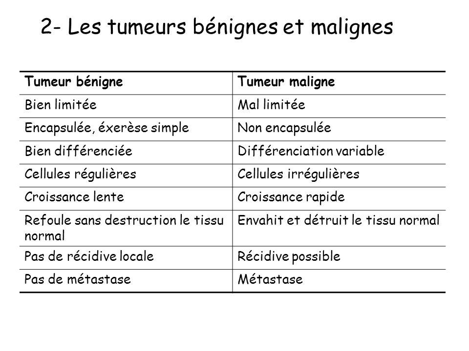 2- Les tumeurs bénignes et malignes