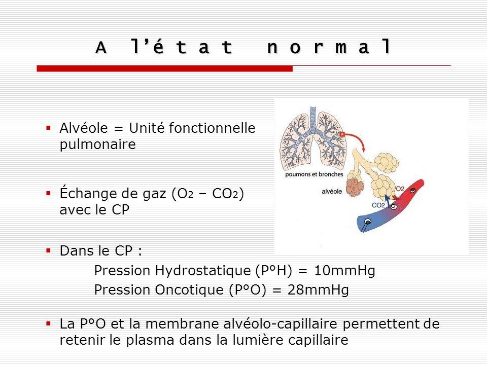 A l'é t a t n o r m a l Alvéole = Unité fonctionnelle pulmonaire