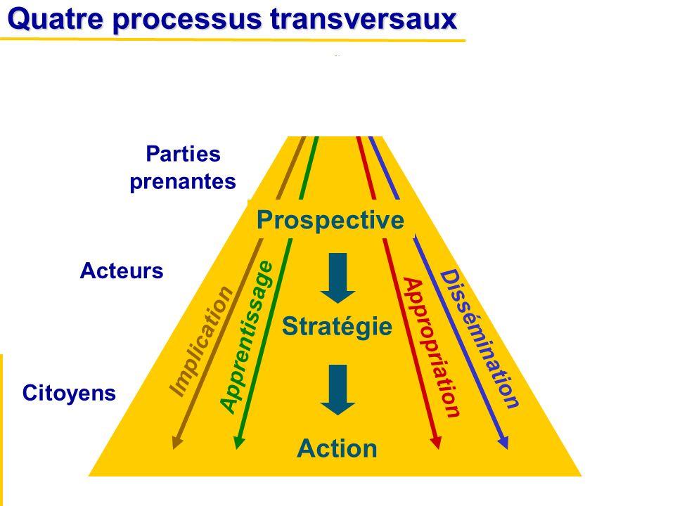 Quatre processus transversaux