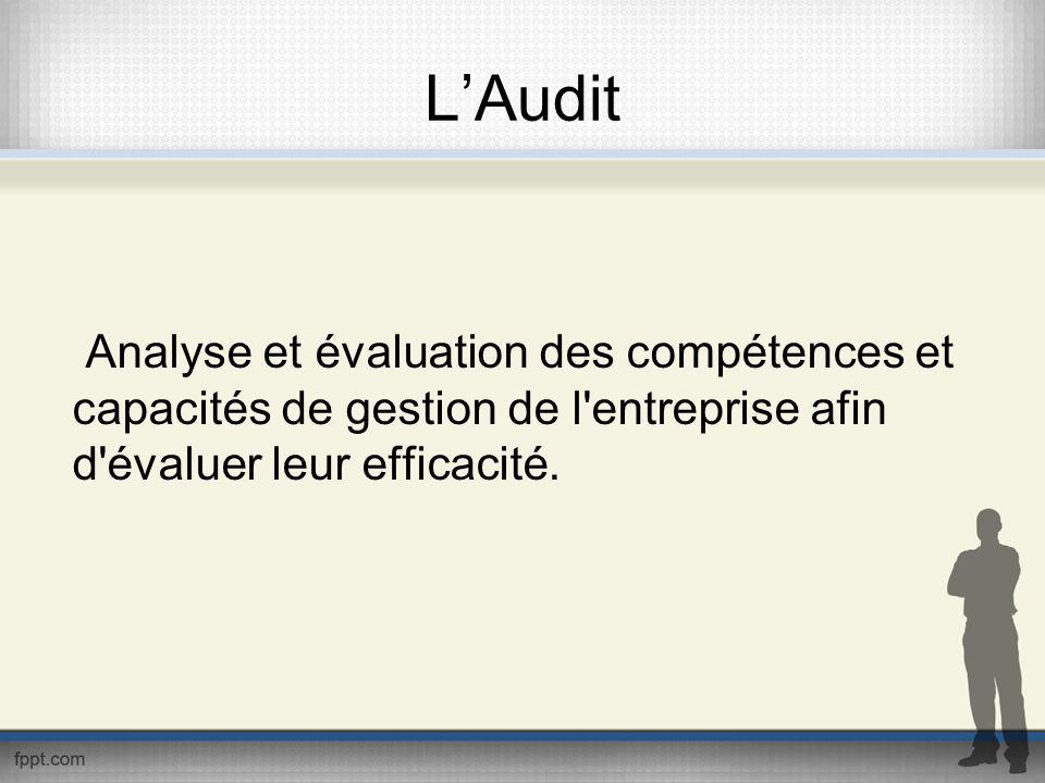 L'Audit Analyse et évaluation des compétences et capacités de gestion de l entreprise afin d évaluer leur efficacité.