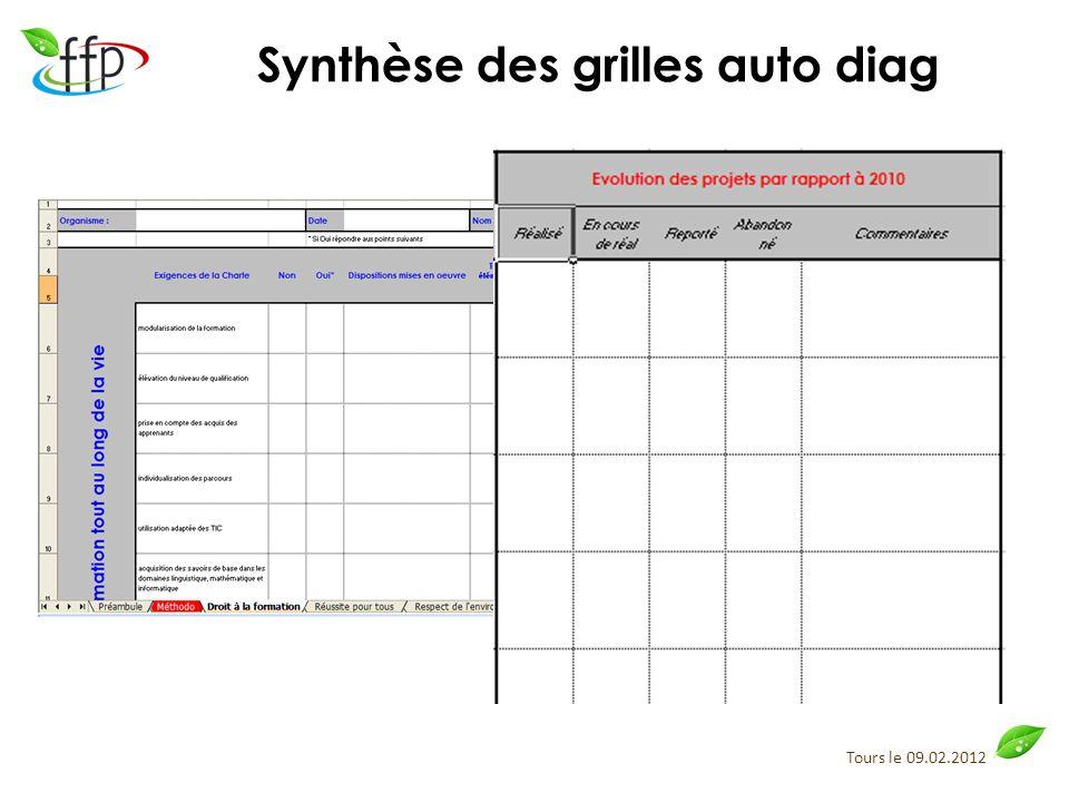 Synthèse des grilles auto diag