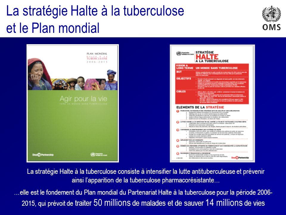 La stratégie Halte à la tuberculose et le Plan mondial