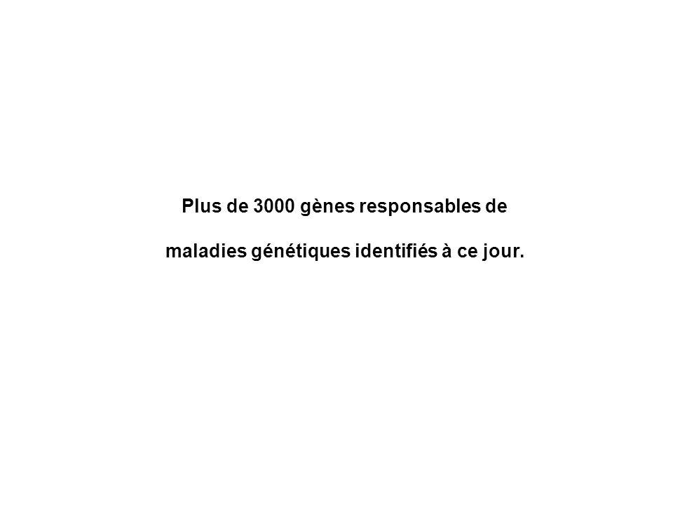 Plus de 3000 gènes responsables de
