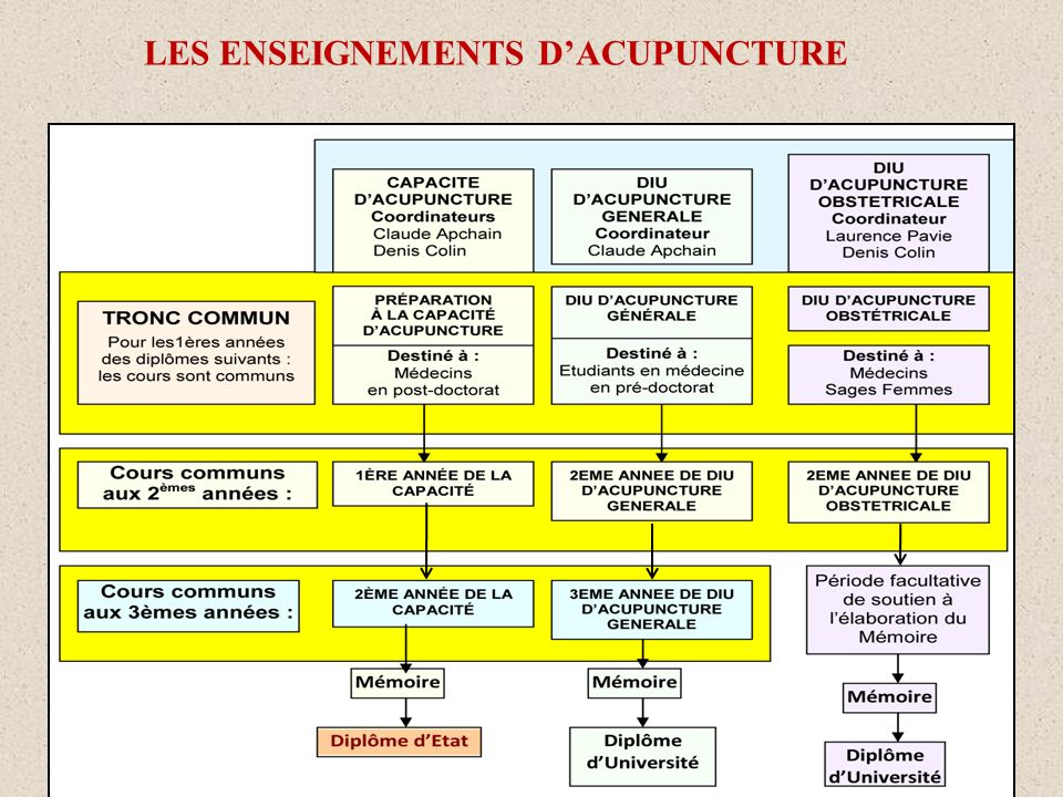 LES ENSEIGNEMENTS D'ACUPUNCTURE