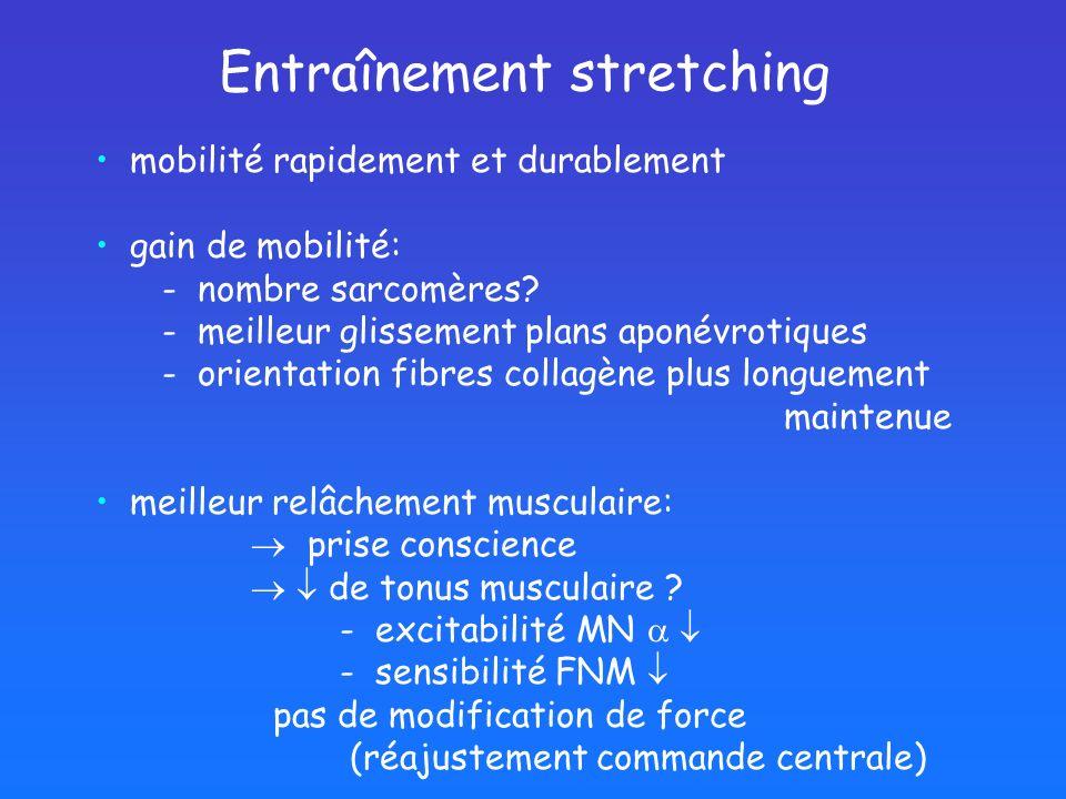 Entraînement stretching