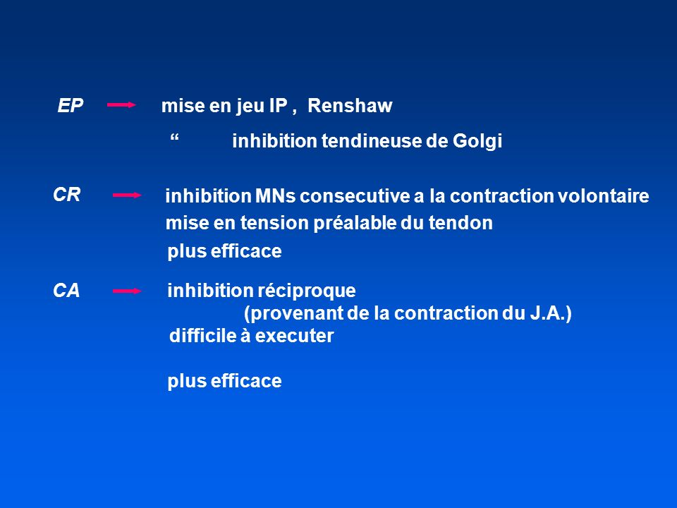 EP mise en jeu IP , Renshaw. inhibition tendineuse de Golgi. CR. inhibition MNs consecutive a la contraction volontaire.