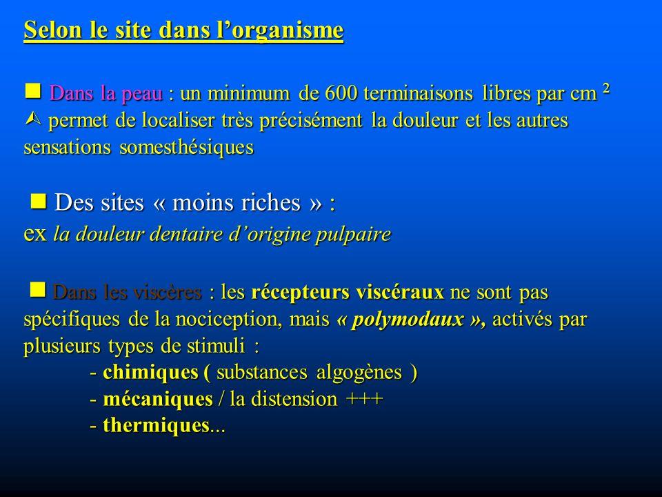 Selon le site dans l'organisme  Dans la peau : un minimum de 600 terminaisons libres par cm 2  permet de localiser très précisément la douleur et les autres sensations somesthésiques  Des sites « moins riches » : ex la douleur dentaire d'origine pulpaire  Dans les viscères : les récepteurs viscéraux ne sont pas spécifiques de la nociception, mais « polymodaux », activés par plusieurs types de stimuli : - chimiques ( substances algogènes ) - mécaniques / la distension +++ - thermiques...