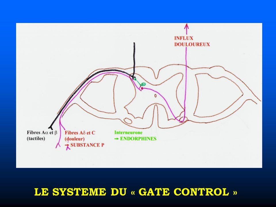 LE SYSTEME DU « GATE CONTROL »