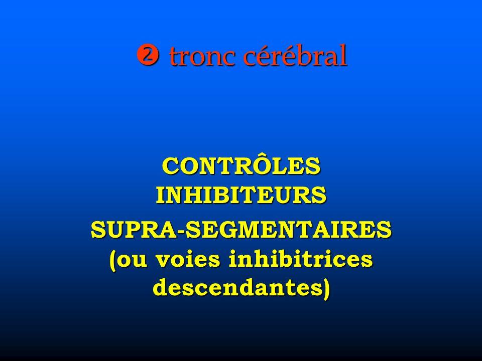  tronc cérébral CONTRÔLES INHIBITEURS