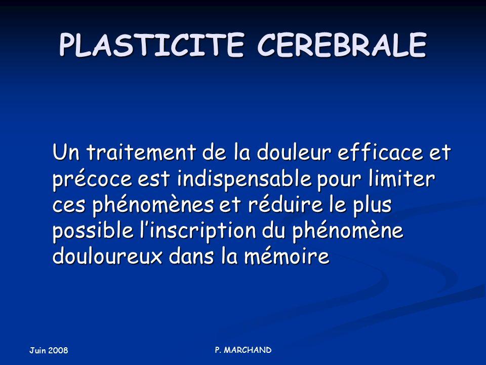 PLASTICITE CEREBRALE