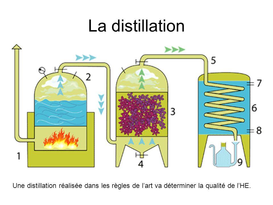 La distillation Une distillation réalisée dans les règles de l'art va déterminer la qualité de l'HE.