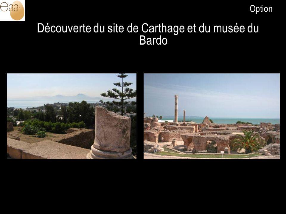 Découverte du site de Carthage et du musée du Bardo