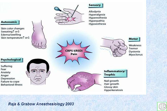 Raja & Grabow Anesthesiology 2003