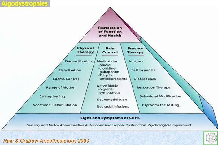 Algodystrophies Raja & Grabow Anesthesiology 2003