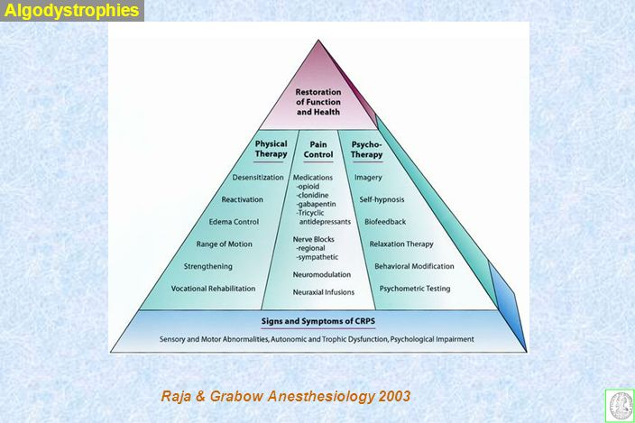 Algodystrophies Raja & Grabow Anesthesiology 2003