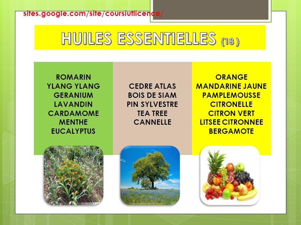 HUILES ESSENTIELLES (18 )