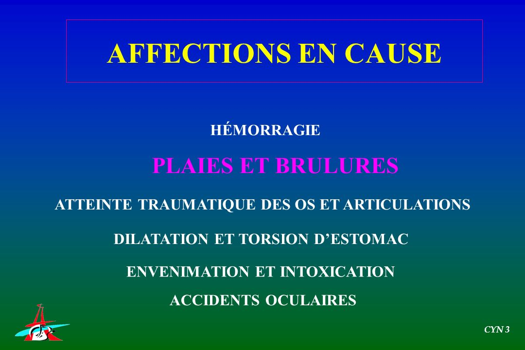 AFFECTIONS EN CAUSE PLAIES ET BRULURES HÉMORRAGIE