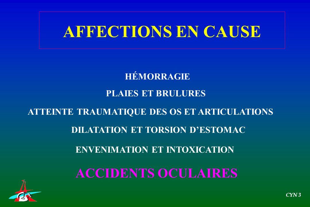 AFFECTIONS EN CAUSE ACCIDENTS OCULAIRES HÉMORRAGIE PLAIES ET BRULURES