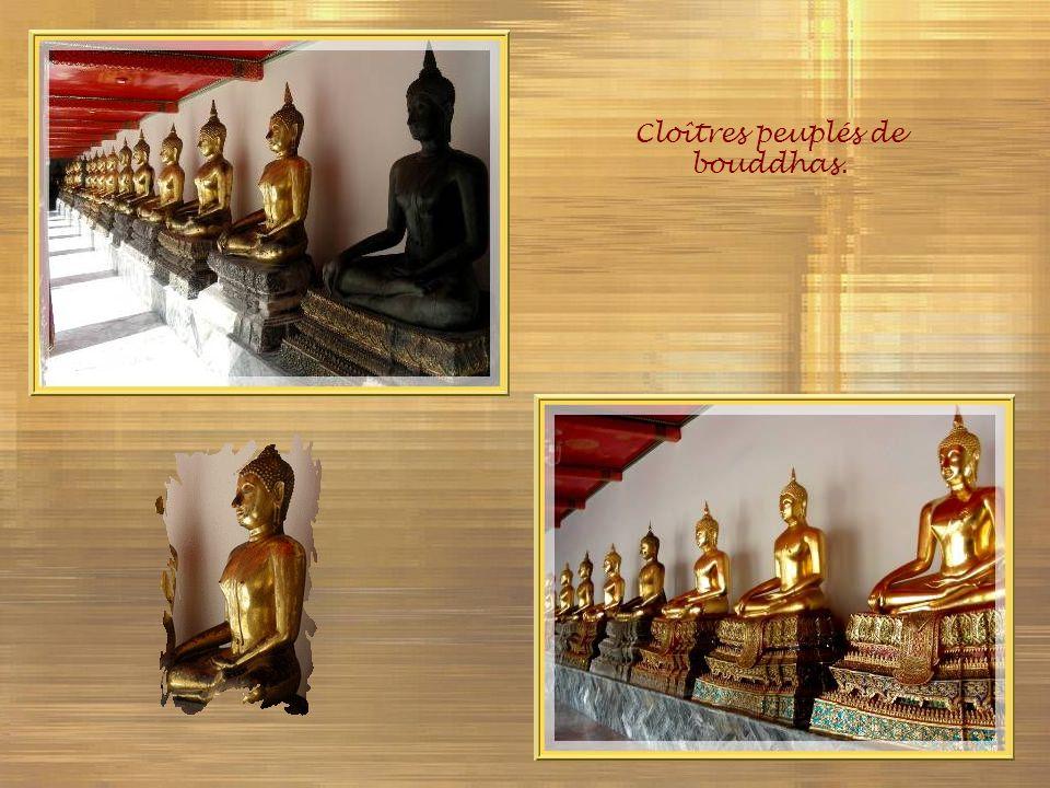 Cloîtres peuplés de bouddhas.