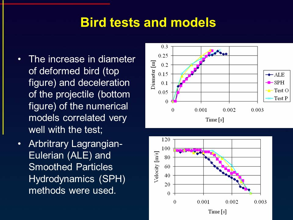 Bird tests and models