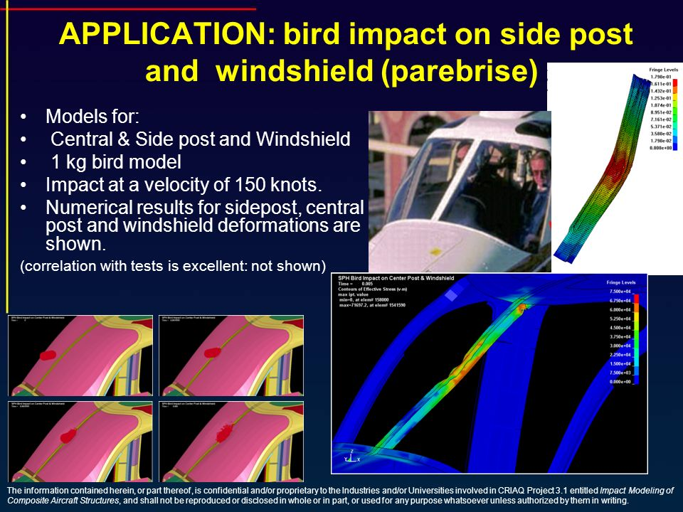 APPLICATION: bird impact on side post and windshield (parebrise)