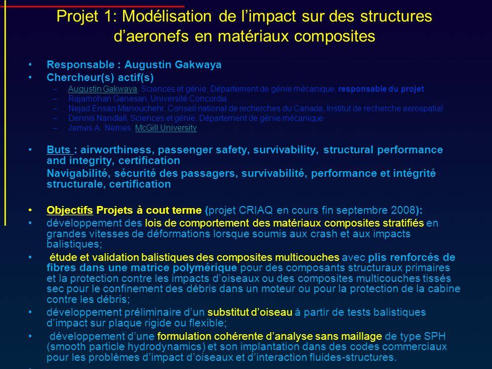 Projet 1: Modélisation de l'impact sur des structures d'aeronefs en matériaux composites