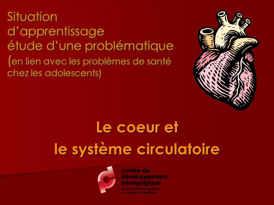 Le coeur et le système circulatoire