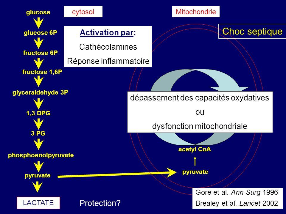 Choc septique Activation par: Cathécolamines Réponse inflammatoire