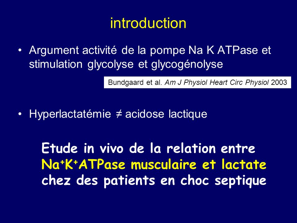 Bundgaard et al. Am J Physiol Heart Circ Physiol 2003