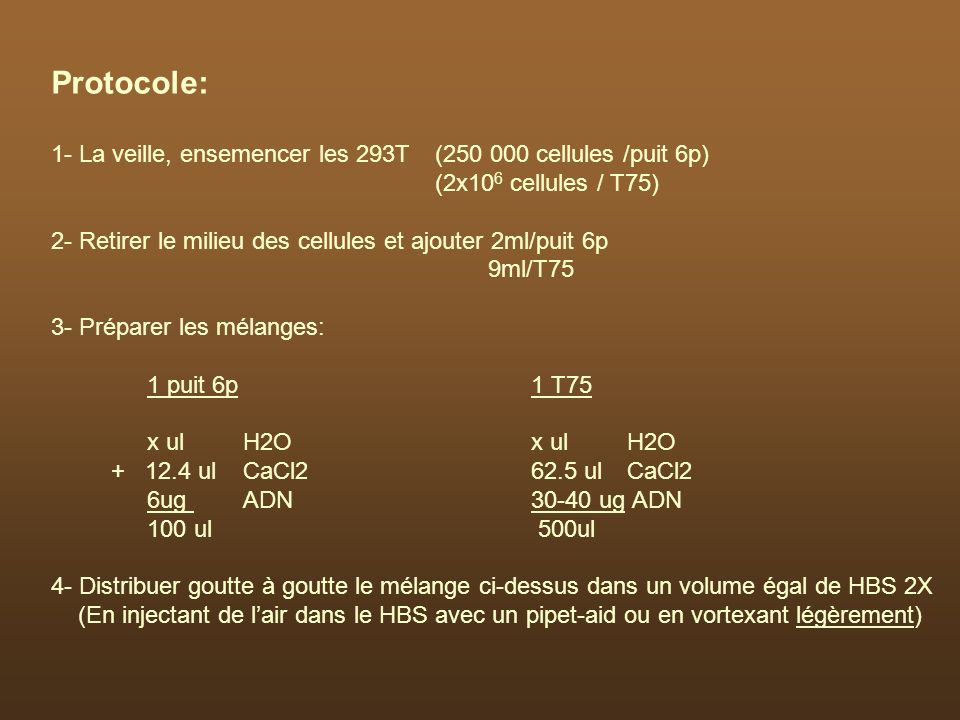 Protocole: 1- La veille, ensemencer les 293T (250 000 cellules /puit 6p) (2x106 cellules / T75)