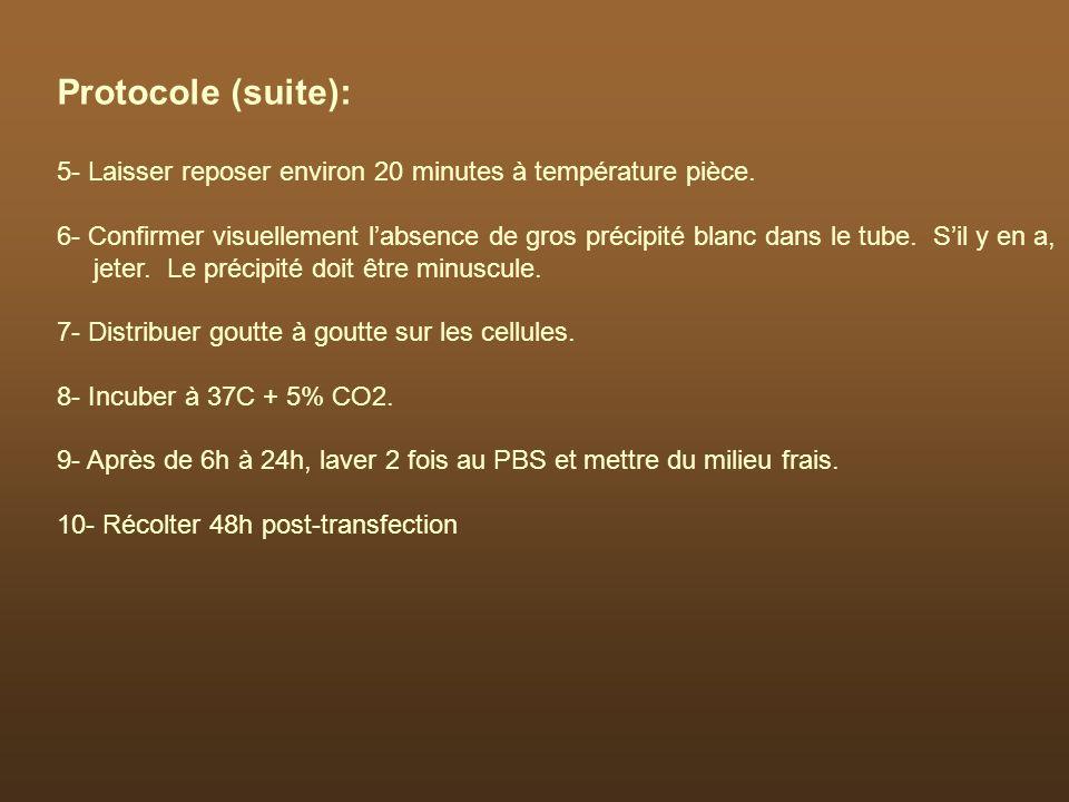 Protocole (suite): 5- Laisser reposer environ 20 minutes à température pièce.