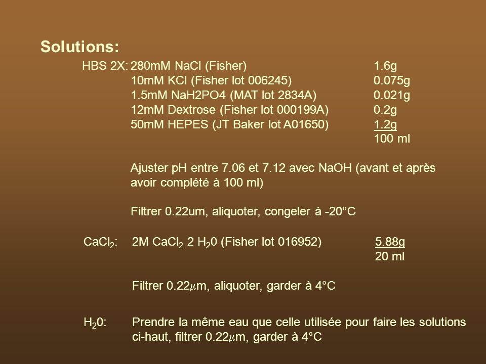 Solutions: HBS 2X: 280mM NaCl (Fisher) 1.6g
