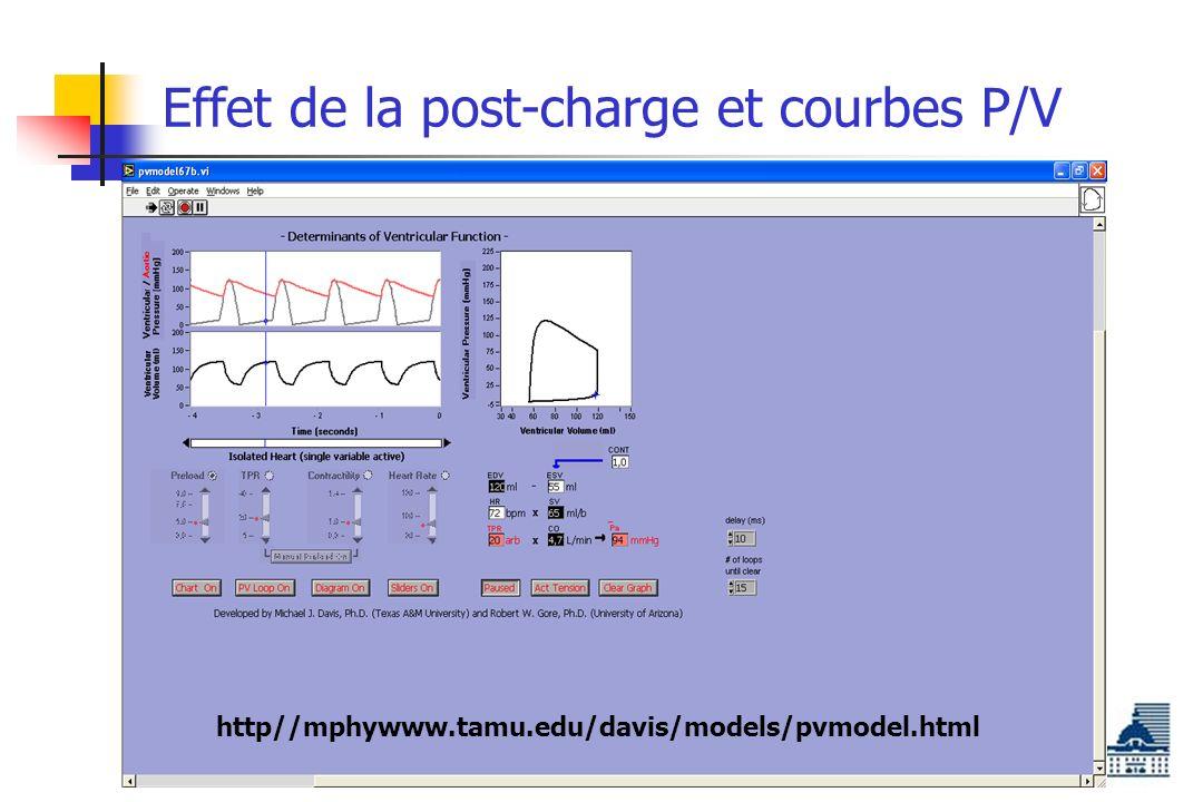 Effet de la post-charge et courbes P/V