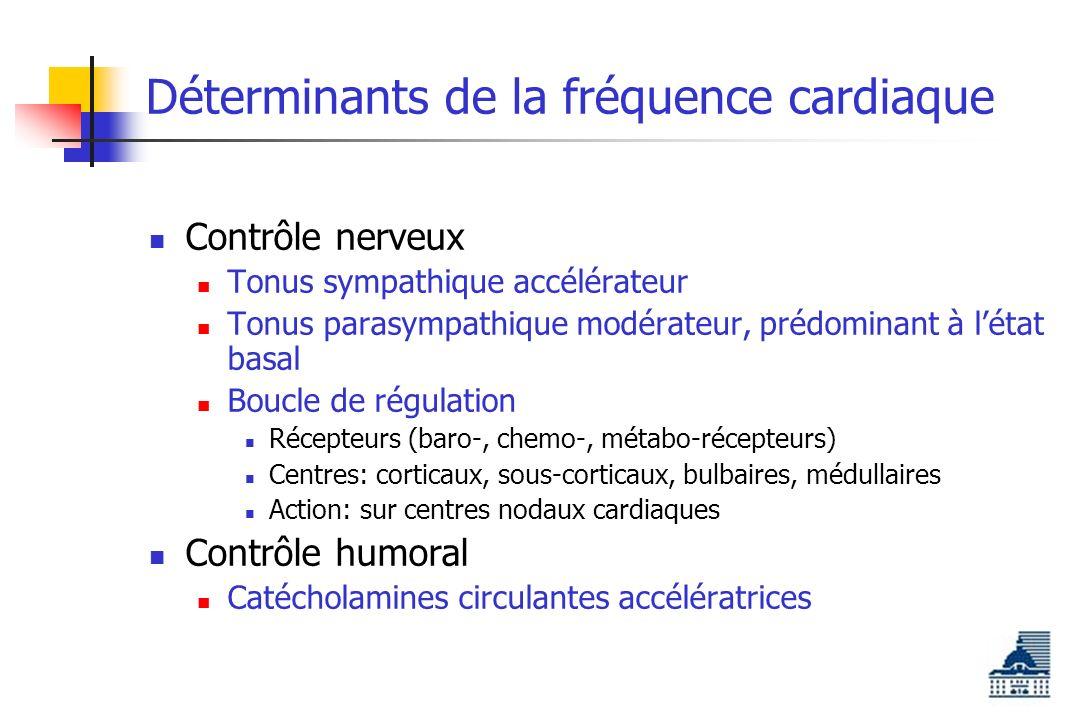 Déterminants de la fréquence cardiaque