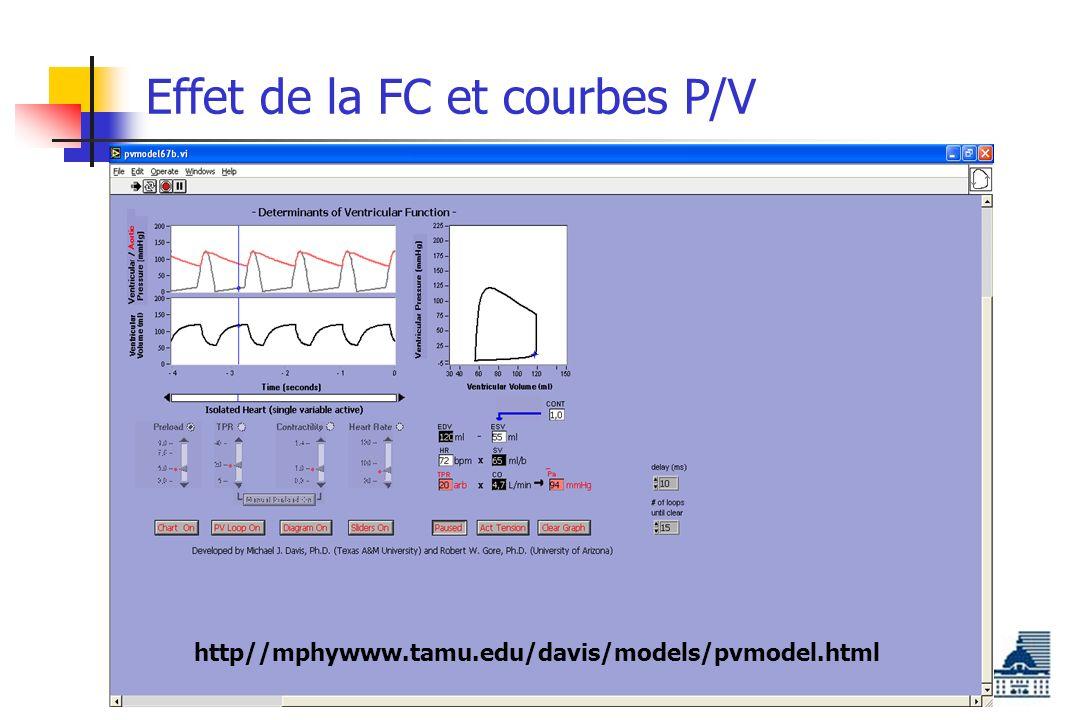 Effet de la FC et courbes P/V