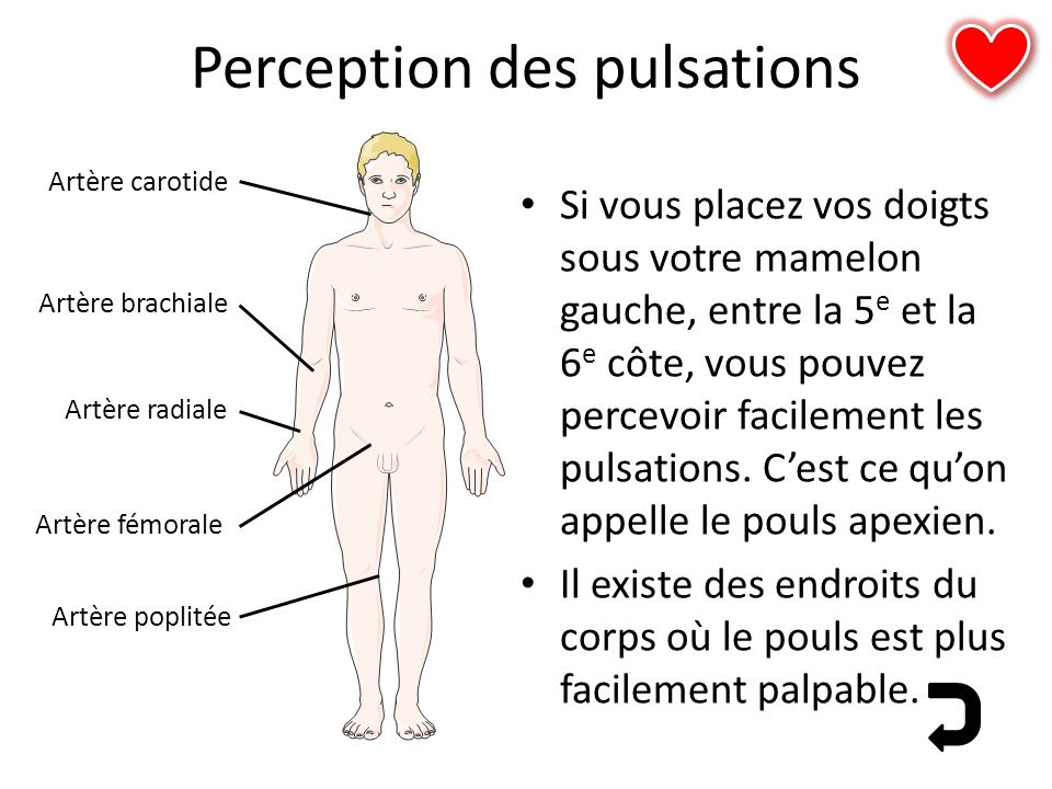 Perception des pulsations
