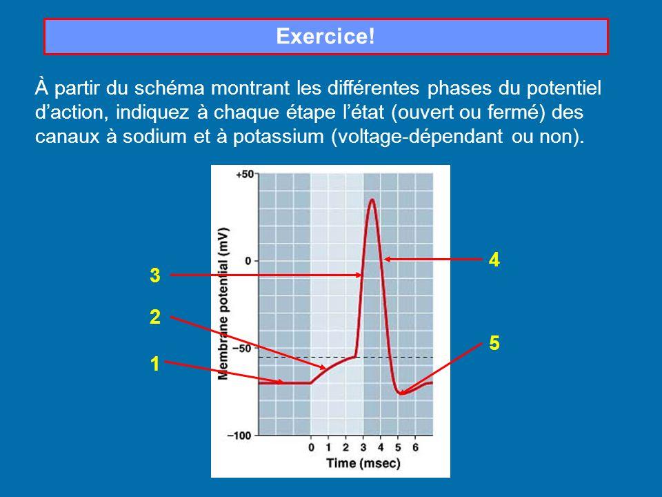 Exercice!
