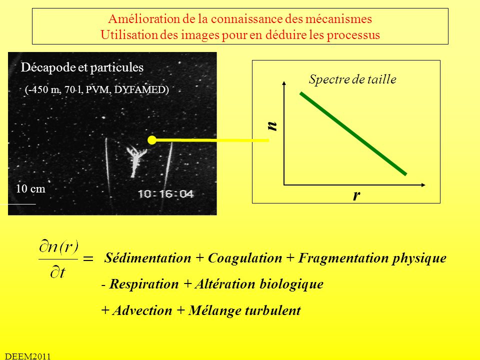 n r Sédimentation + Coagulation + Fragmentation physique