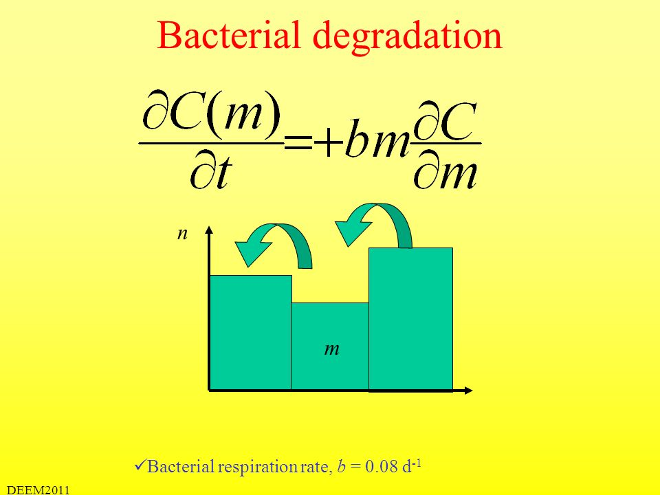 Bacterial degradation
