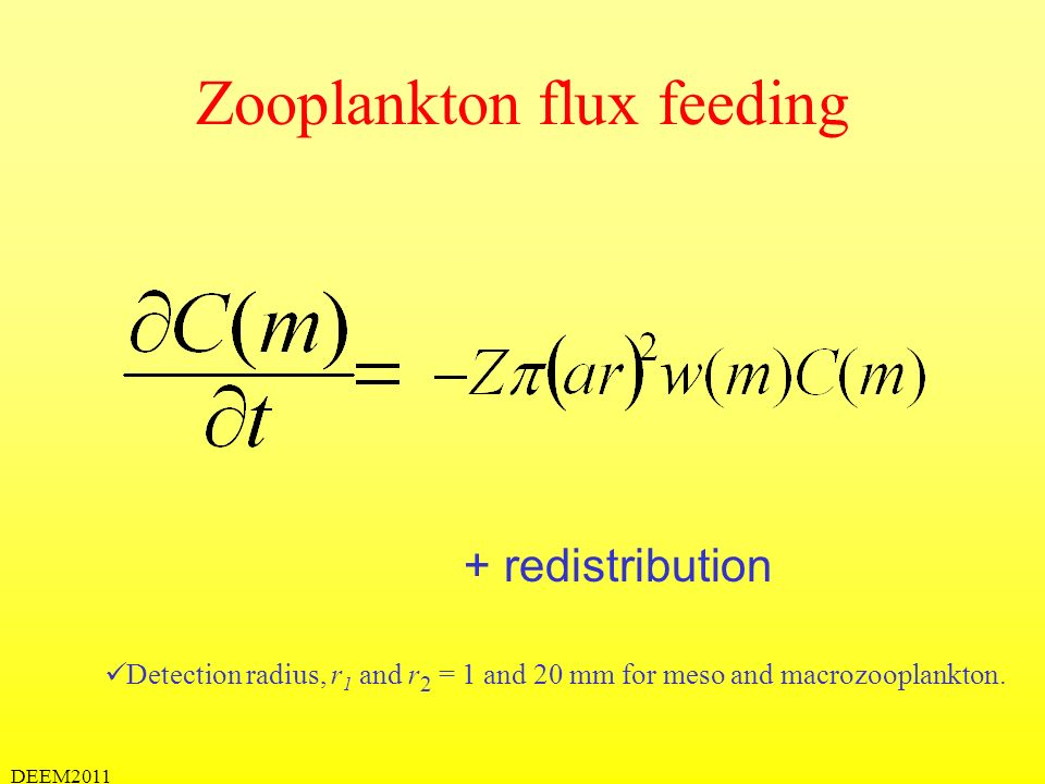 Zooplankton flux feeding