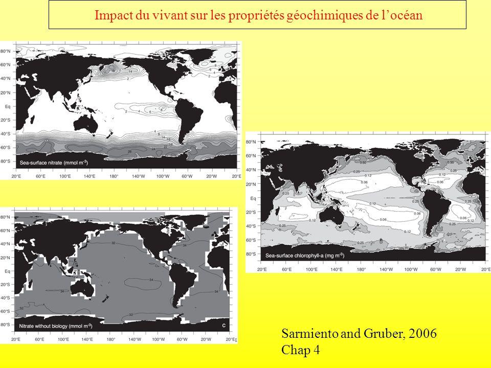 Impact du vivant sur les propriétés géochimiques de l'océan