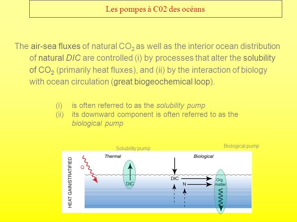Les pompes à C02 des océans