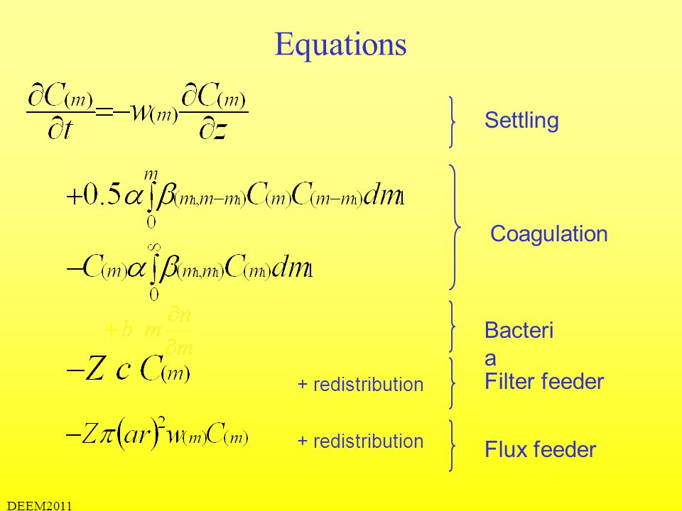 Equations Settling Coagulation Bacteria Filter feeder