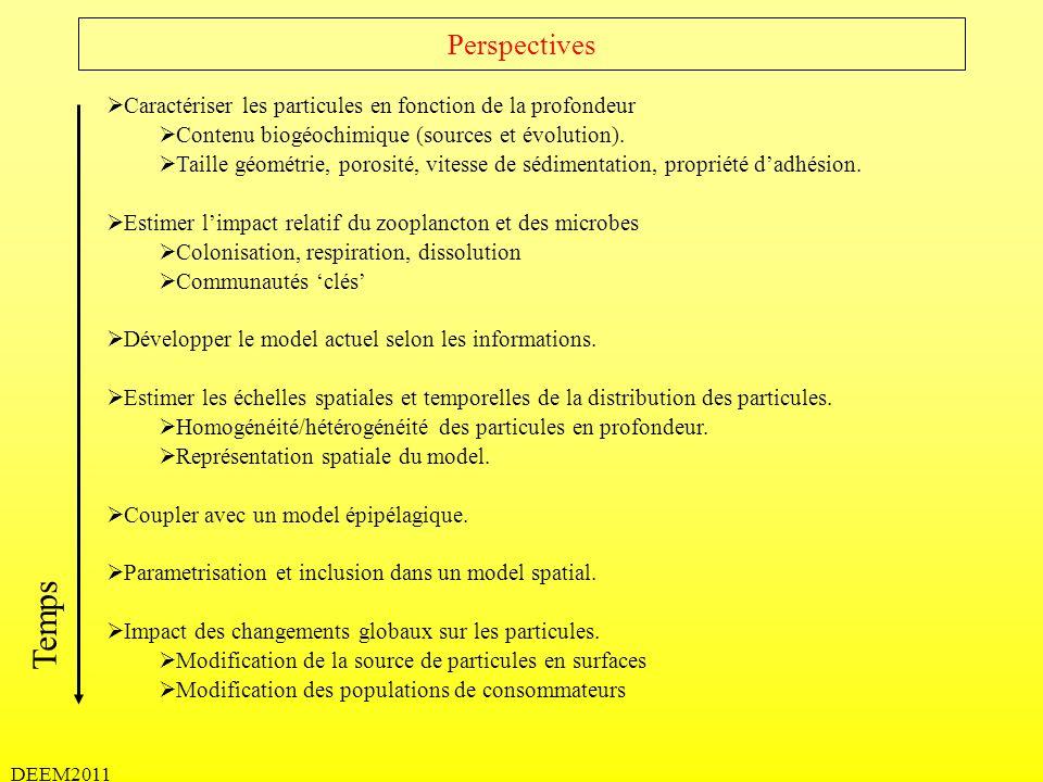 Perspectives Caractériser les particules en fonction de la profondeur. Contenu biogéochimique (sources et évolution).