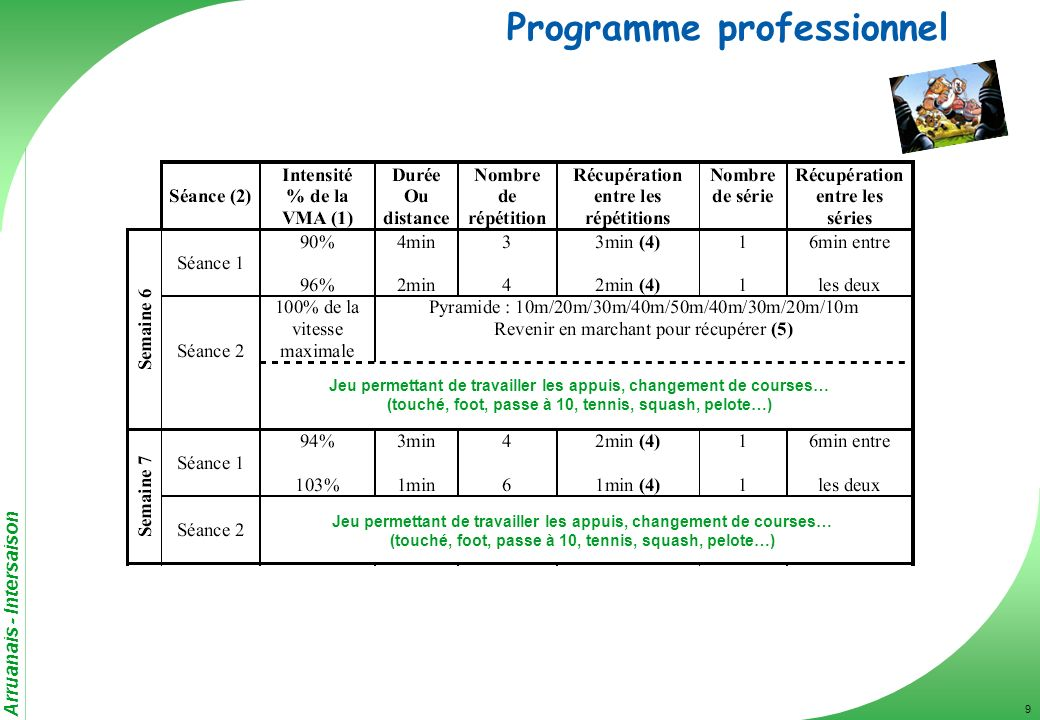 Programme professionnel