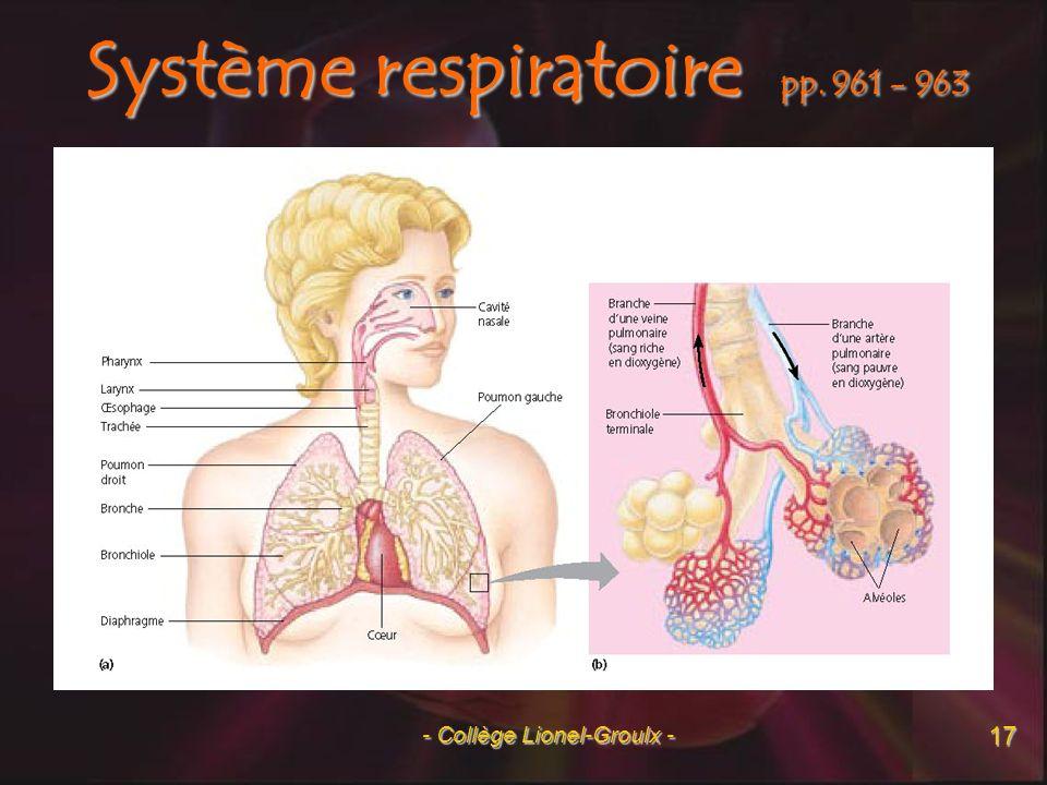Système respiratoire pp. 961 - 963