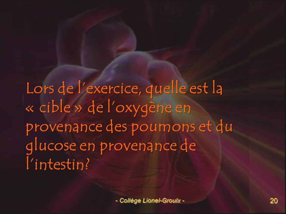 - Collège Lionel-Groulx -