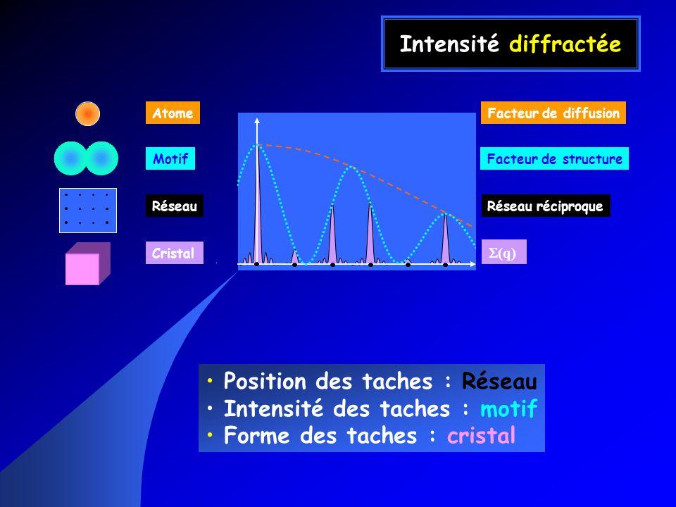 Position des taches : Réseau Intensité des taches : motif