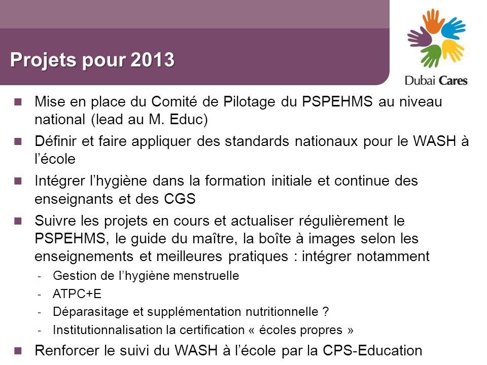 Projets pour 2013 Mise en place du Comité de Pilotage du PSPEHMS au niveau national (lead au M. Educ)