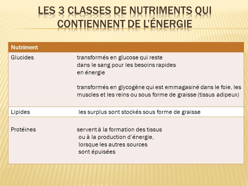 Les 3 classes de nutriments qui contiennent de l'énergie